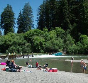 Photo of summer at johnson's beach russian river, guerneville california