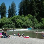 summer at johnson's beach russian river, guerneville california