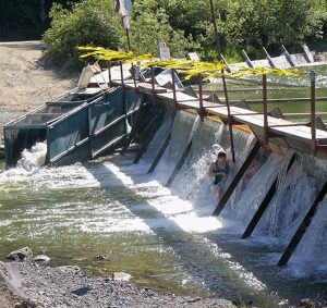 Photos of teenagers cooling off vacation beach dam spillway guerneville california
